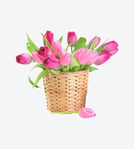 Arreglo tulipanes rosa